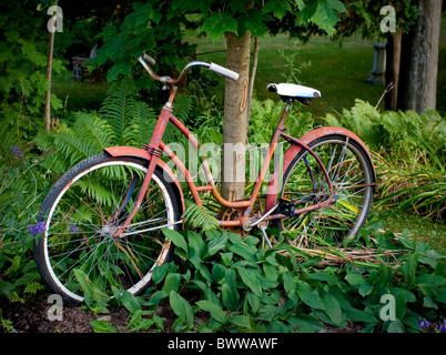 Red rusted bicycle underneath tree - Stock Photo