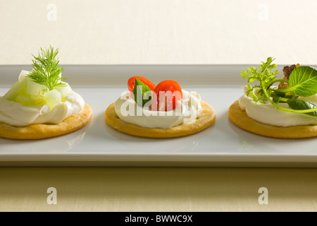 Crackers with Creamy Cheese spread, garnished with Tomatoes, Basil, Cucumber, Dill, Mixed Green and Radishes on - Stock Photo