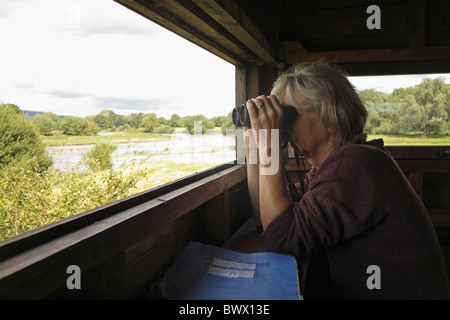 woman person birdwatching bird watch watching binocular hobby hobbies pastime hide reserve powys wales welsh britain - Stock Photo