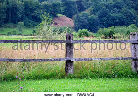 An old wooden fence in the field - Stock Photo