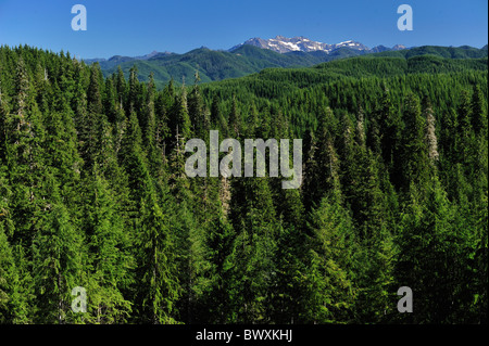 Clearwater River basin, Washington - Stock Photo