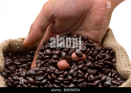 Hand reaching into roasted coffee beans in burlap bag - Stock Photo