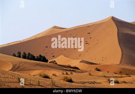The Great Merzouga Dune in the Sahara desert, Erg Chebbi, Morocco. - Stock Photo