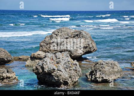 Coast at Bathsheba, Barbados, West Indies, Caribbean. Huge boulders eroded by the Atlantic Ocean's heavy surf are - Stock Photo