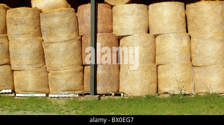 round wheat bales stacked stock rows golden dried circle shape - Stock Photo