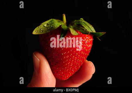 Single strawberry being held between two fingers with water drops - Stock Photo