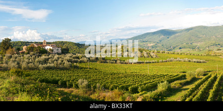 Panoramic view of Tuscany near Greve in Chianti - Stock Photo