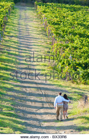Couple walking together through a vineyard in Tuscany Italy - Stock Photo