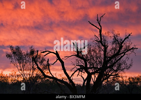 A gorgeous sunrise paints the sky over Anson, Texas in Jones County. - Stock Photo