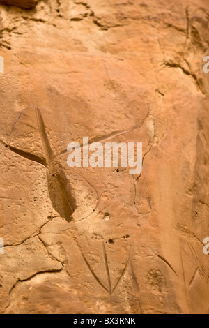 Petroglyphs along the petroglyph trail at The Chaco Culture National Historic Site in Chaco Canyon, New Mexico. - Stock Photo