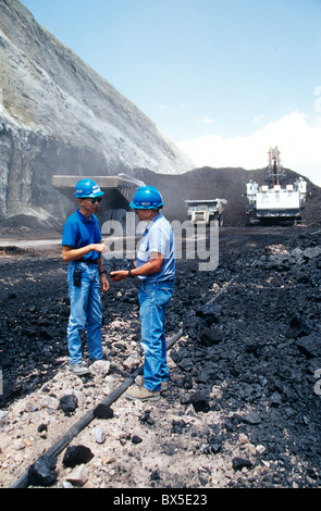 Engineer explains quality of 'coal' specimen to visitor. - Stock Photo