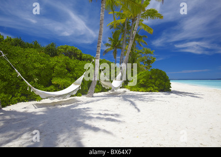 Hammock on empty tropical beach, Maldives, Indian Ocean, Asia - Stock Photo