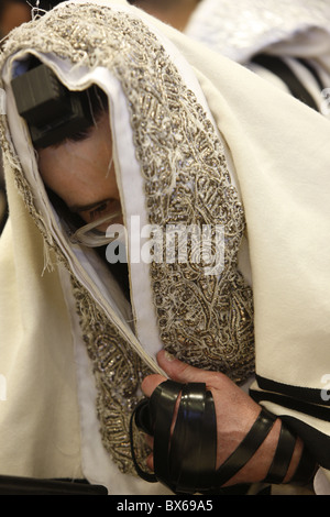 Orthodox Jew in the Belz Synagogue, Jerusalem, Israel, Middle East - Stock Photo