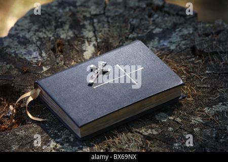 Bible on tree bark, Megeve, Haute Savoie, France, Europe - Stock Photo