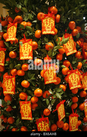 Tangerine good luck symbols, Chinese New Year decoration, Macao, China, Asia - Stock Photo