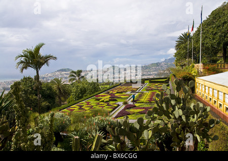 View over the Botanical Garden, Funchal, Madeira, Portugal, Europe - Stock Photo