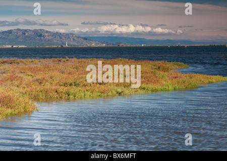 El Fangar, Natural Park of Delta de l'Ebre, Tarragona, Spain - Stock Photo