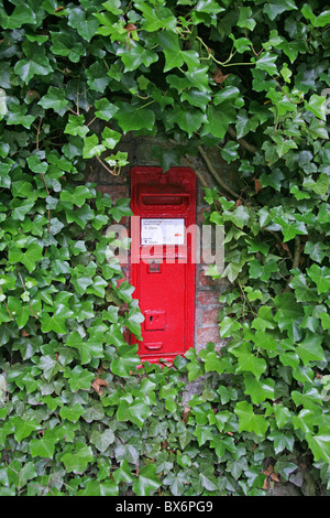 A red Victorian post box in an ivy covered wall - Stock Photo