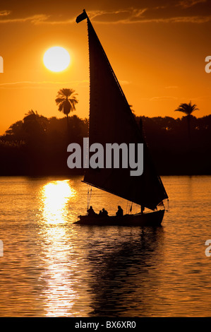 A stunning and beautiful image of a traditional Egyptian sail boat called a felucca on the Nile at sunset with palms - Stock Photo