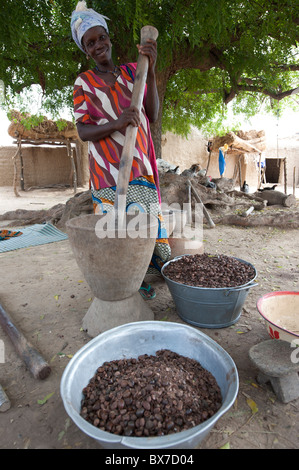 Adult woman pounding shea nuts. Decortication is done by crushing the outer shell to remove kernels. Mali, West - Stock Photo