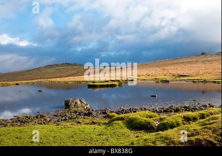 Pond on Dartmoor after heavy rain shower, Devon UK - Stock Photo
