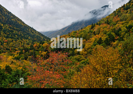 Autumn Color in Crawford Notch in the White Mountains National Forest in Carroll County, New Hampshire - Stock Photo