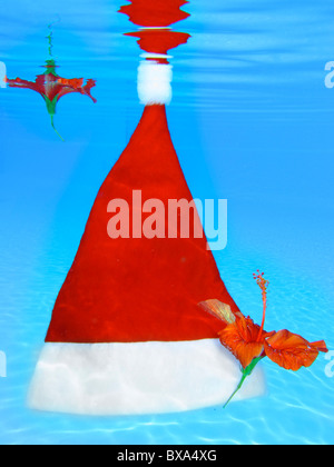 Santa hat floating in a tropical swimming pool with red hibiscus flowers - Stock Photo