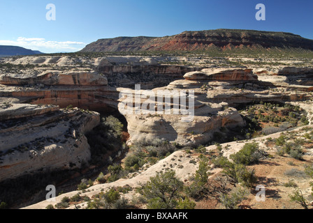Kachina Bridge in Utah - Stock Photo