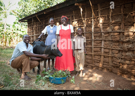 A Ugandan family stands outside their home with their cow in Buwanyanga Village - Sironko, Eastern Uganda, East - Stock Photo