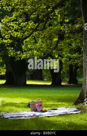 Blanket with picnic basket in park - Stock Photo