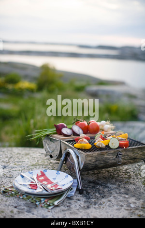 Vegetables on barbecue grill - Stock Photo