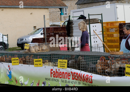 Stock photo of Poultry for sale on market stalls at the Les Herolles farmers market in the Limousin region of France. - Stock Photo