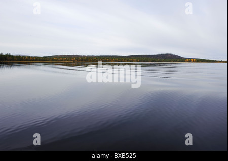 Calm water, shore with forest in the background - Stock Photo