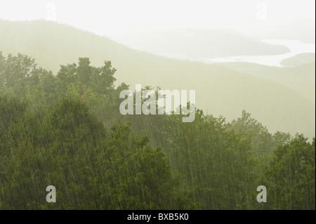 Landscape in rainy day - Stock Photo