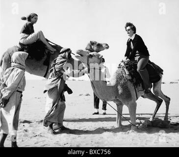 tourism, tourists, women riding camels in the desert, 1950, Additional-Rights-Clearences-NA - Stock Photo