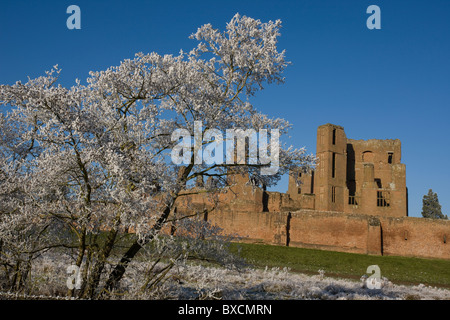 Hoarfrost on trees - United Kingdom - Stock Photo