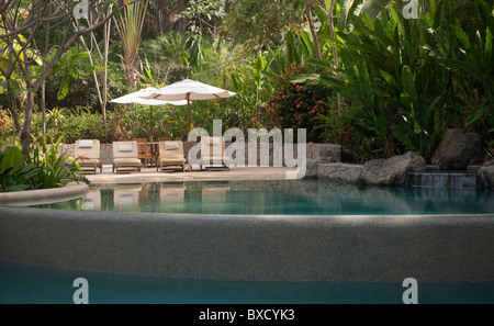 Four lounge chairs under a sun umbrella, in the jungle next to the reflective swimming pool - Stock Photo