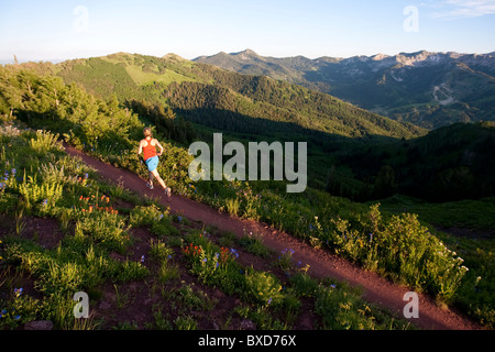 A woman  trail running on the crest trail. Big Cottonwood Canyon, Utah - Stock Photo