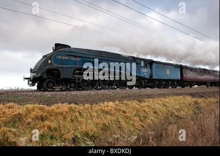 Sir Nigel Gresley A4 Pacific on the Kings Lynn to London line at Ten Mile Bank shortly after passing over The River - Stock Photo