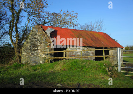 Old Shed rural North County Dublin Ireland - Stock Photo