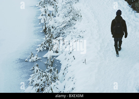 Walker walking in winter conditions on a snow covered canal towpath. Grand Western Canal at Sampford Peverell, Tiverton, - Stock Photo