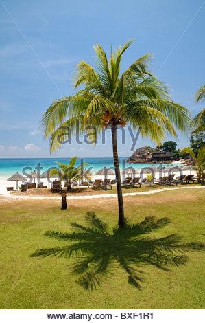 Beach with palm trees, Pulau Redang island, Malaysia, Southeast Asia, Asia - Stock Photo