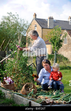 A mother and her son with a crop of freshly pulled onions from a raised bed in an English garden Common Farm Flowers - Stock Photo