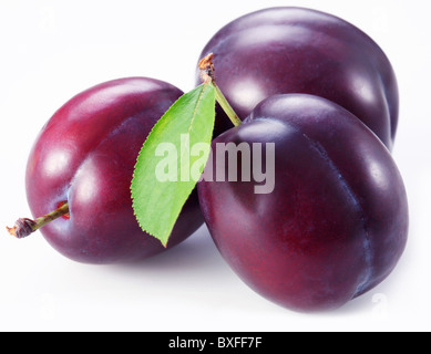Three plums with leaves on white background. - Stock Photo