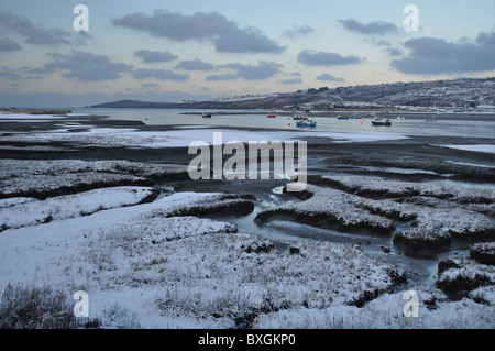 View of cardigan island from marshes, winter, river teifi, st dogmaels, pembrokeshire, wales, united kingdom - Stock Photo