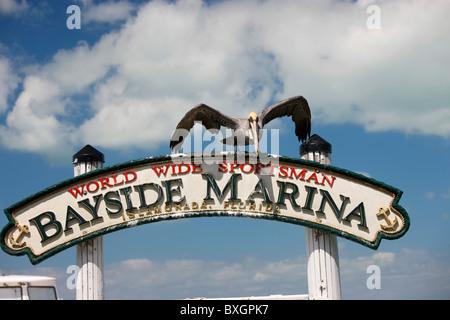 Brown Pelican at Bayside Marina, Islamorada, Florida Keys, USA - Stock Photo