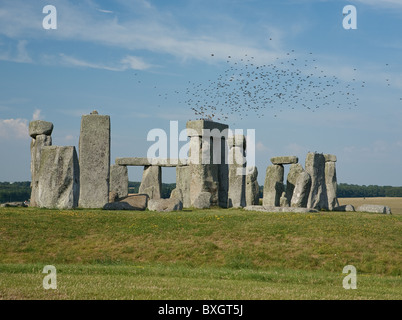 a flock of birds over the stone circle at Stonehenge Wiltshire UK under a blue sky with wispy clouds - Stock Photo