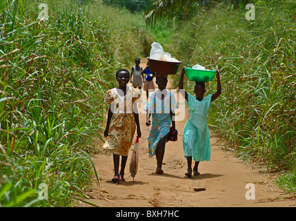 Girls walk along a dirt track through elephant grass in the Ivory Coast, West Africa - Stock Photo