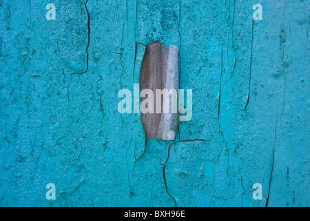 Detail of cracked painted barn door - Stock Photo