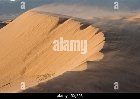 Sand dunes (Ergs) in Sahara desert caused by  aeolian processes showing sand being blown from dune by wind. Morocco. - Stock Photo